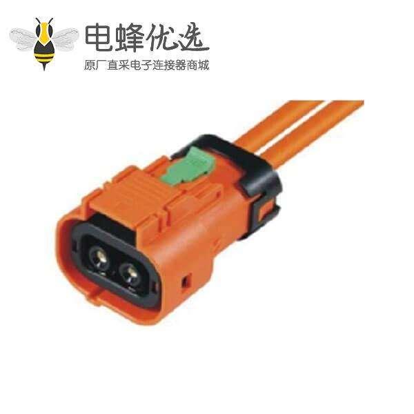 新能源插头电动汽车用50A2芯防水插头