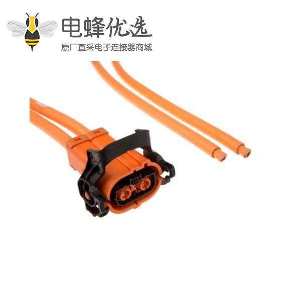 高压连接器线束250A 2芯插头接2米线材