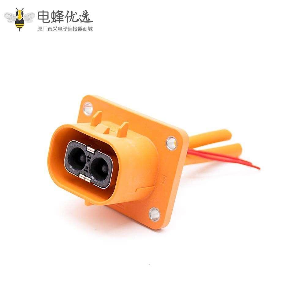 电动汽车连接器高压互锁连接器插头插座直式2芯23A塑料不带屏蔽接6平方线